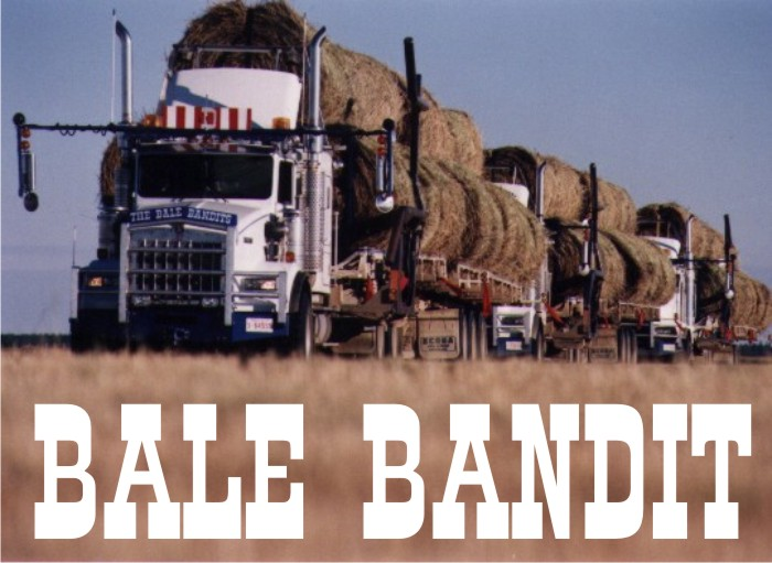 link to bale bandit bale carrier page